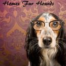 Homes Fur Hounds