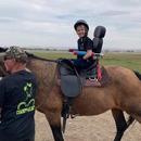 Champs Heart - Equine non profit
