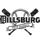 Dillsburg Youth Baseball