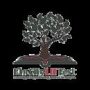 Elm City LITFest