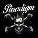 PARADIGM CONCRETE FINISHES