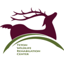 Teton Wildlife Rehabilitation Center