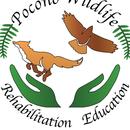 Pocono Wildlife Rehabilitation and Education Center