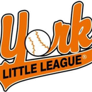York Little League