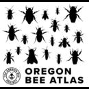 Bee Atlas