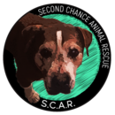 Sceond Chance Animal Rescue
