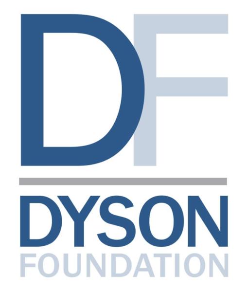 The Dyson Doundation